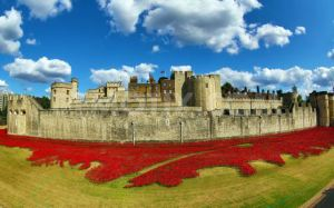 paul-cummins-ceramic-poppies-tower-of-london_01